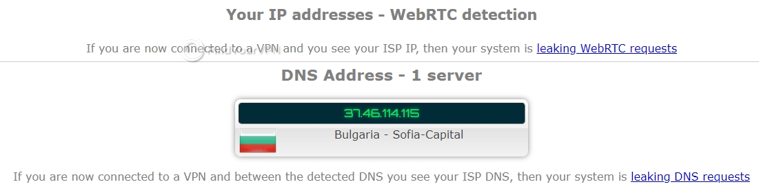 ProtonVPN ipleak DNS Test no leaks