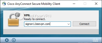BeeVPN before connection