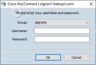 You need to type your credentials to connect to BeeVPN
