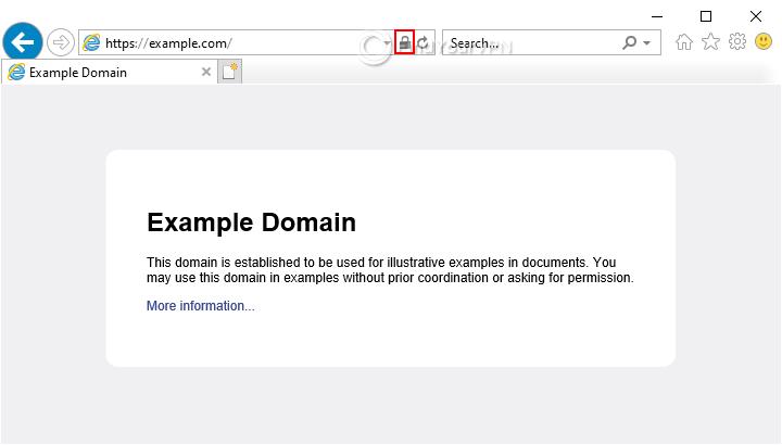 An HTTPS website example in Internet Explorer