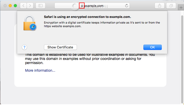 An HTTPS website example with site information in Safari