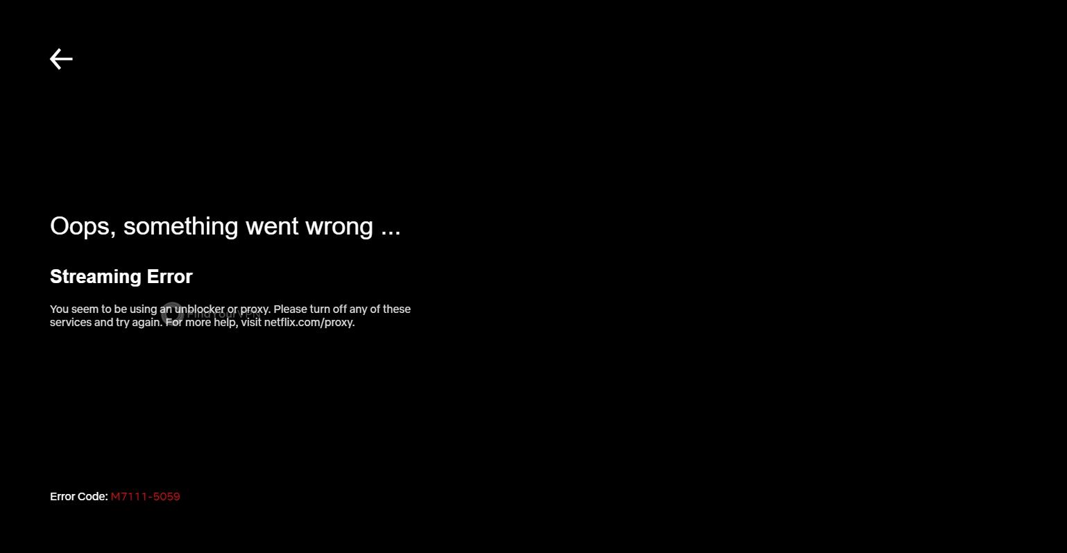 RitaVPN can't unblock Netflix