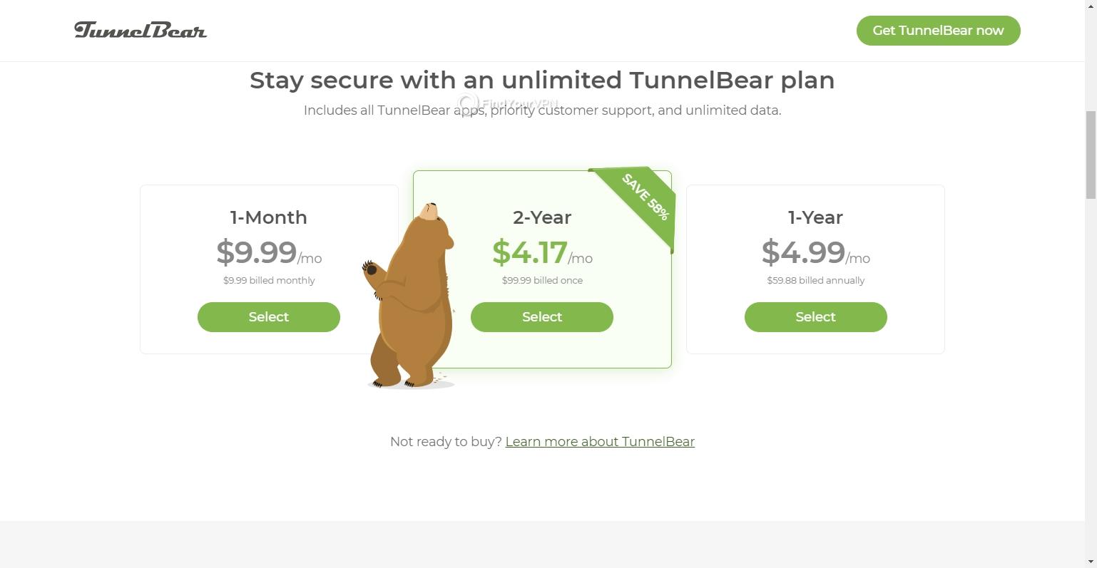Choose a TunnelBear plan